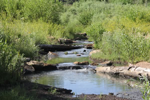 Trail Creek Watershed Restoration Plan - After, 2014