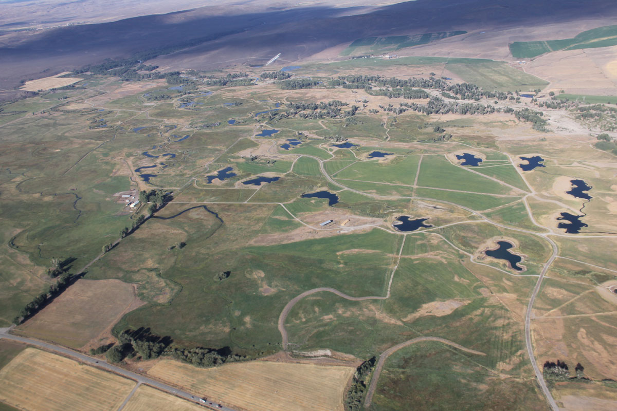 Heartrock Ranch one year after restoration without flood irrigation