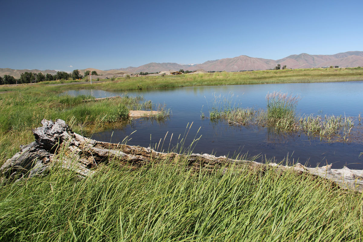 Post-restoration condition that converted the previous entrenched Crystal Creek into a wetland (as shown) while remeandering Crystal Creek in a new location