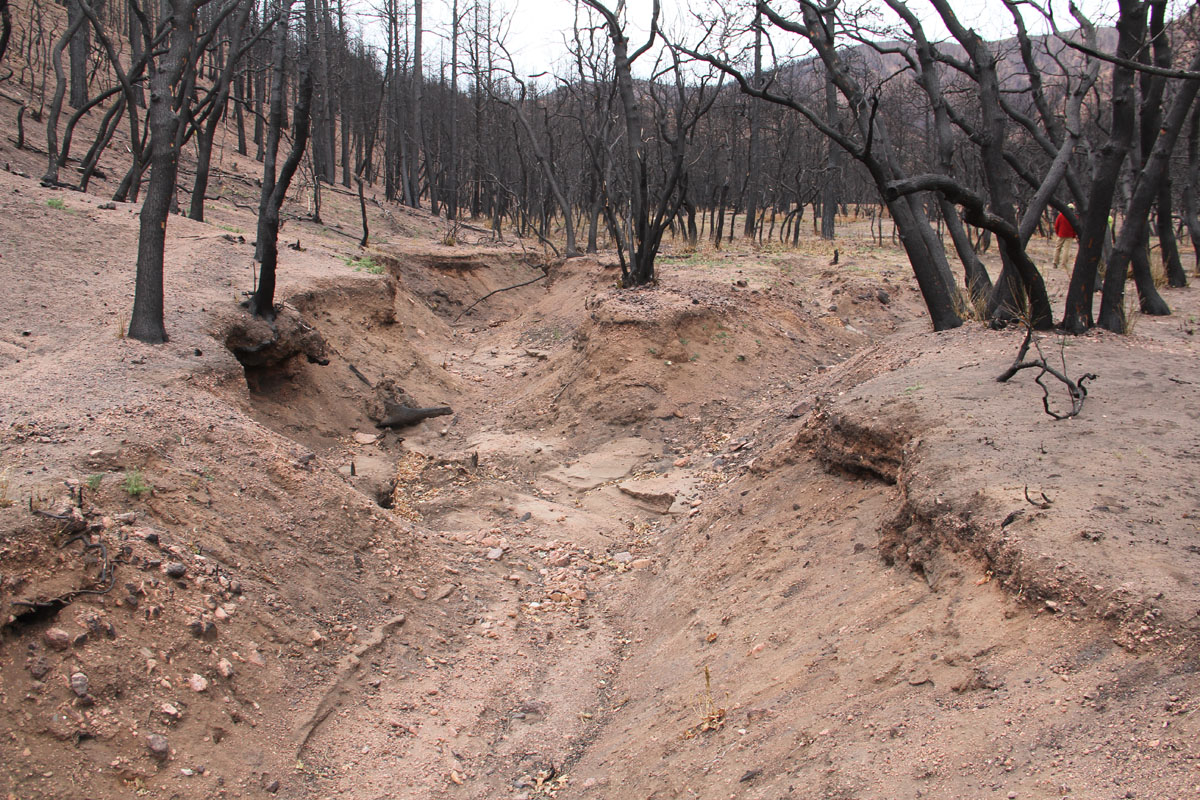 Constructed debris basin in enlarged gully on North Douglas Creek to reconnect fan and fill gully