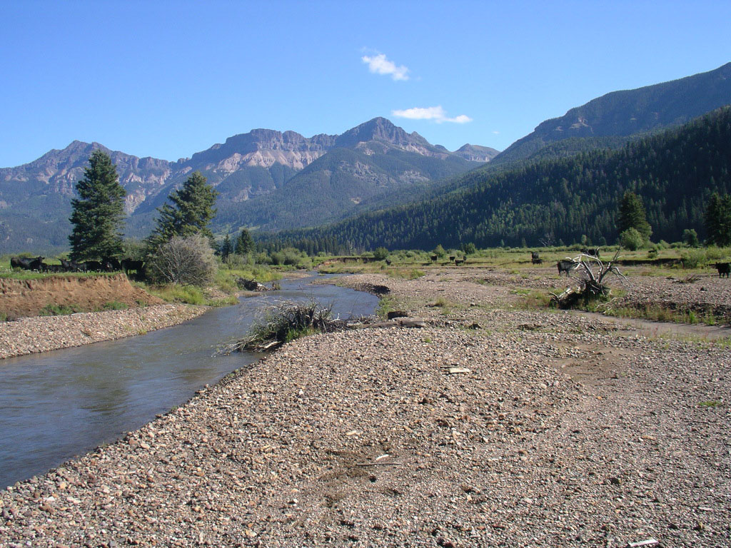 Weminuche Creek prior to restoration showing an overwide, braided channel